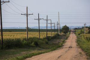 A corn field near Pickrell, Nebraska