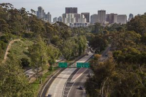 Looking downtown San Diego from Balboa Park